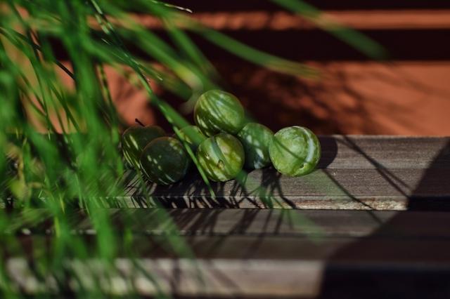 Greenages
